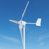 Horizontal Axis Wind Turbine1kw Generator Price