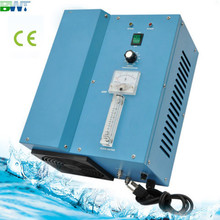 220V water and pool treatment dedicated ozone generator