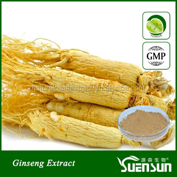 GMP factory supply high quality and low price ginseng extract