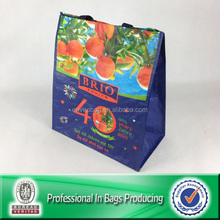 Eco-friendly color pp woven reusable market shopping bags
