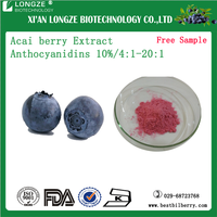 100% Natural Brazilian Acai Berry Fruit Juice Concentrate Extract Powder 5::1 with free sample