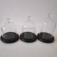 Customize Wholesale Glass Display Domes Suppliers With Wood Base