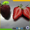 box frozen strawberries bulk owned base pass BRC G.A.P.