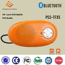 PSS-TFX5 mini portable speaker Fm radio function,TF card and USB flash support