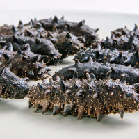 High Quality Dried Wild Sea Cucumber