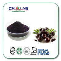 10:1 20:1 wholesale Acai Berry Extract powder acai berry juice powder