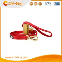 personalized Red nylon dog leash for sale puppy accessories