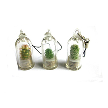 Hogift Made in China Alibaba wholesale Manufacture Style mixed Portable mini cactus Plants Baby tree keychain and key chain