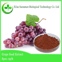 Top Quality Black Grape Seed Extract skin care grape seed extract