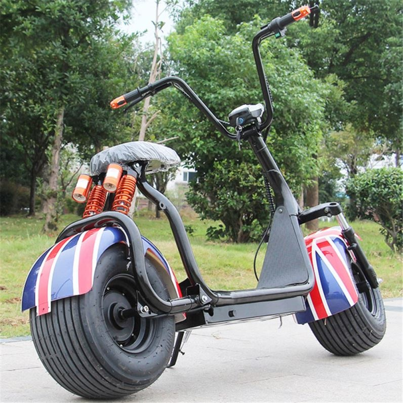 2019 2000W 20Ah 60V Newly Fashion Popular Fat 2 Wheel Scooter Citycoco 2000 <strong>W</strong>