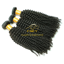 FMT Hot Sale Brazilian Afro Kinky Curly Human Hair Weave with Good Price