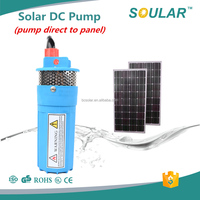 ( Free Shipping ) 2016 DC 24 volts deep well solar submersible dc water pump