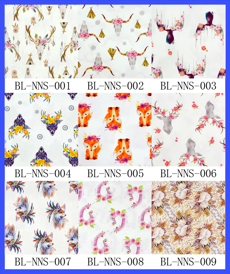 BL-NNS-1.jpg