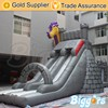 Inflatable Double Lane Slip Slide With Bounce House