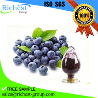 Large Stock Top Standard Water Soluble Blueberry Extract Powder