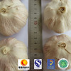 /product-detail/2017-new-crop-normal-white-garlic-pure-white-garlic-60652649349.html