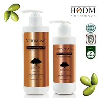 Private Label Argan Oil Shampoo(Salon& Family Use) Herbal Shampoo For Damaged Hair /Nourish And Restore Gloss Of Hair
