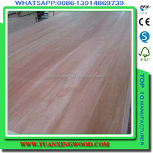 carb e0 glue usa/canada market birch plywood from china linyi city factory