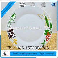Hotel & restaurant use White porcelain china tableware