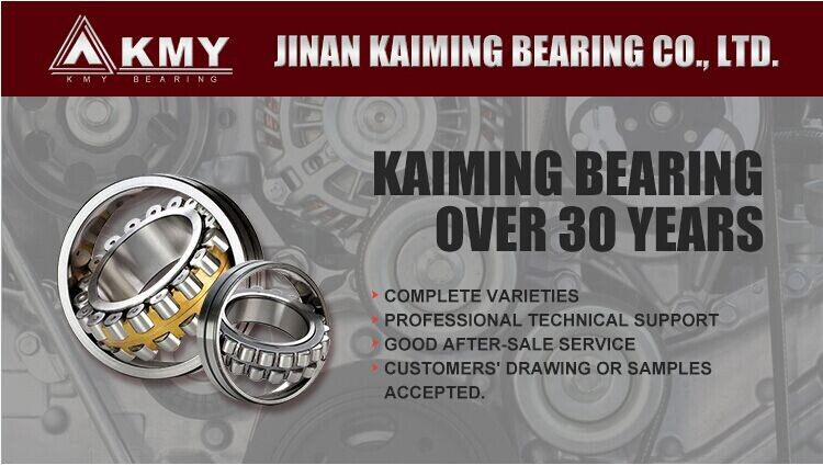 High Precision Single Row NU330 ECM Insulated Cylindrical Roller Bearing