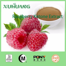 2016 Quality Guarantee Raspberry Ketone Powder/Raspberry Ketone Extract 10:1