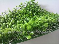 SJ High Quality Artificial Boxwood Grass Mat/ boxwood hedge 25*25cm/pc