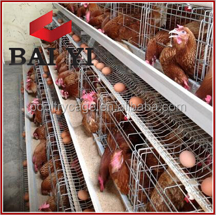 Poultry Farm Layer Cage / Chicken Laying egg Cages System