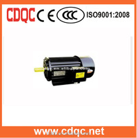 ac electric magnet motor