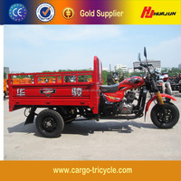 Powerful Transport 3 Wheel Motorcycle Trike/250cc Three Wheeled Motorcycle for Sale