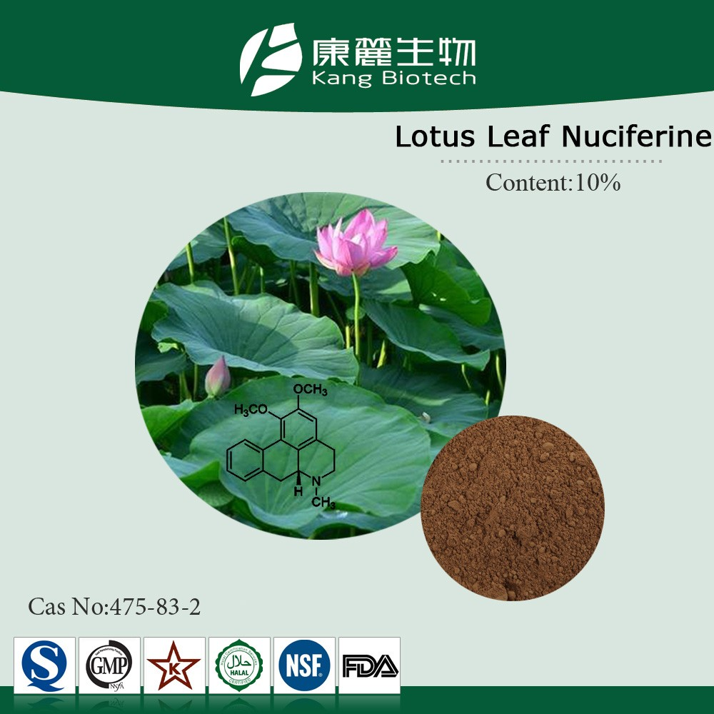 Lotus Leaf Extract Nuciferine Lotus Extract Herbal weight loss product
