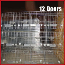 China Supplier Hot Sale Quality Pigeon Cages For Poultry Farm