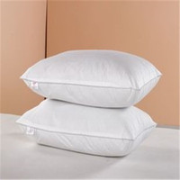 Greek classical style hemorrhoid polyester pillow