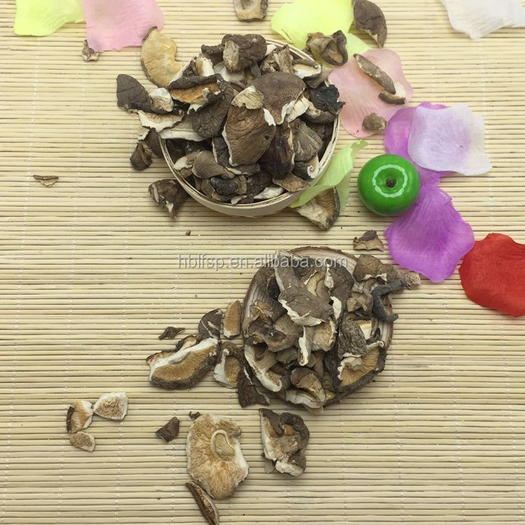 Market Prices for Magic Dried Shiitake Mushroom Broken
