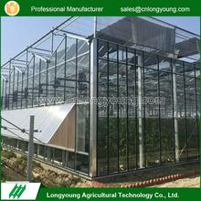 2017 Popular stable structure agriculture glass single venlo greenhouse