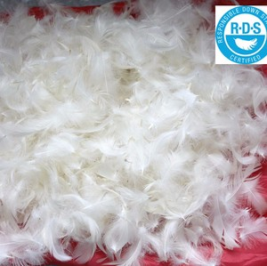 washed white duck feather 4-6cm for sale