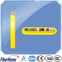 Factory supply 12 core optical fiber cable for Euro market