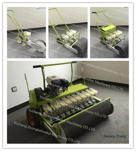 Hand push vegetable seeder
