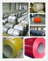 high quality/low price Prepainted galvanized steel sheet/colour coated steel coil/ppgi/ppgl