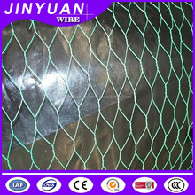 Hot sale China professional cheap PVC coated Hexagonal wire mesh /netting for chicken coop use with factory price