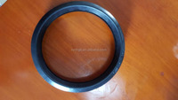 SCHWING concrete pump gasket spare parts