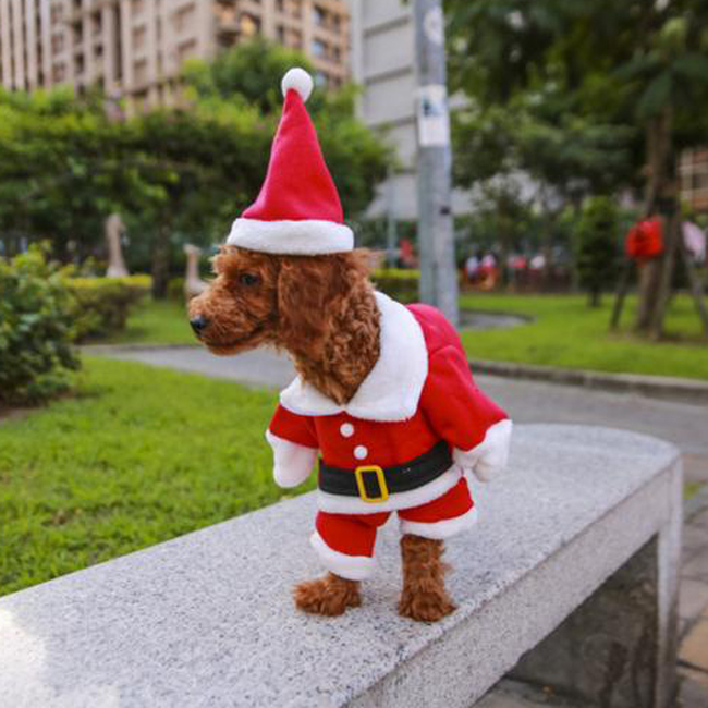 Pets Turned Funny Santa Claus Cosplay Outfits Dogs Christmas Costumes For Winter