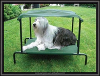 Factory wholesale metal frame iron pet dog beds large dog beds with cover and roof