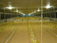 Huabo automatic control poultry shed for broiler