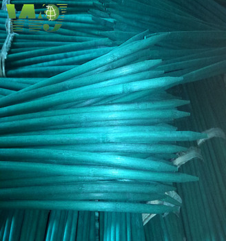 WY-144 2017 pointed dyed bamboo stick supplies China