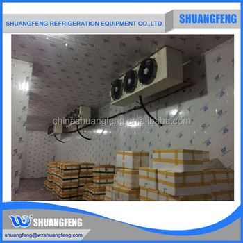 cold storage refrigerated room for fruit, fish vegetables storage