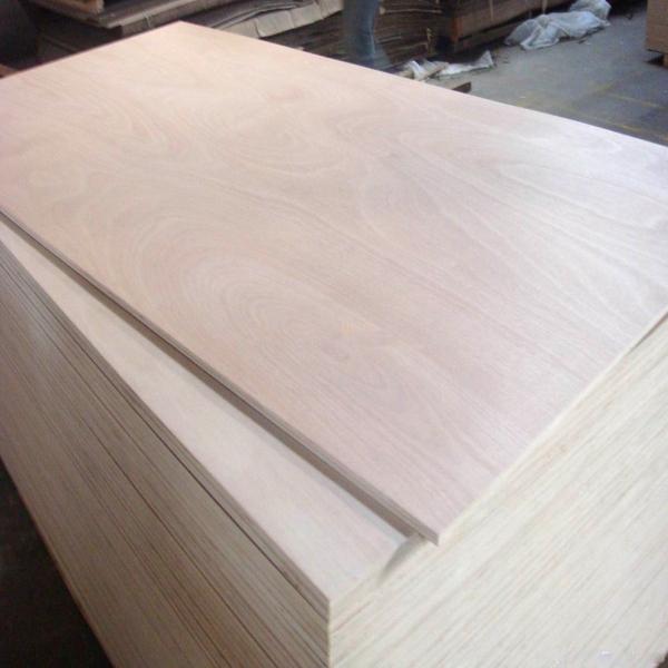 White laminated plywood sheet buy