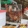 3 layers 96 chickens commercial plastic chicken cage
