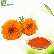 Chinese Manufacturer Pure Marigold Lutein Extract Powder