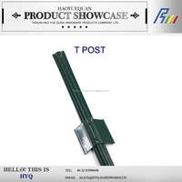 Euro post steel T/Y fence post from China manufacturer