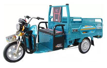 multifunctional 3 wheeler auto rickshaw/electric tuk tuk china/tuk tuk electric for adults